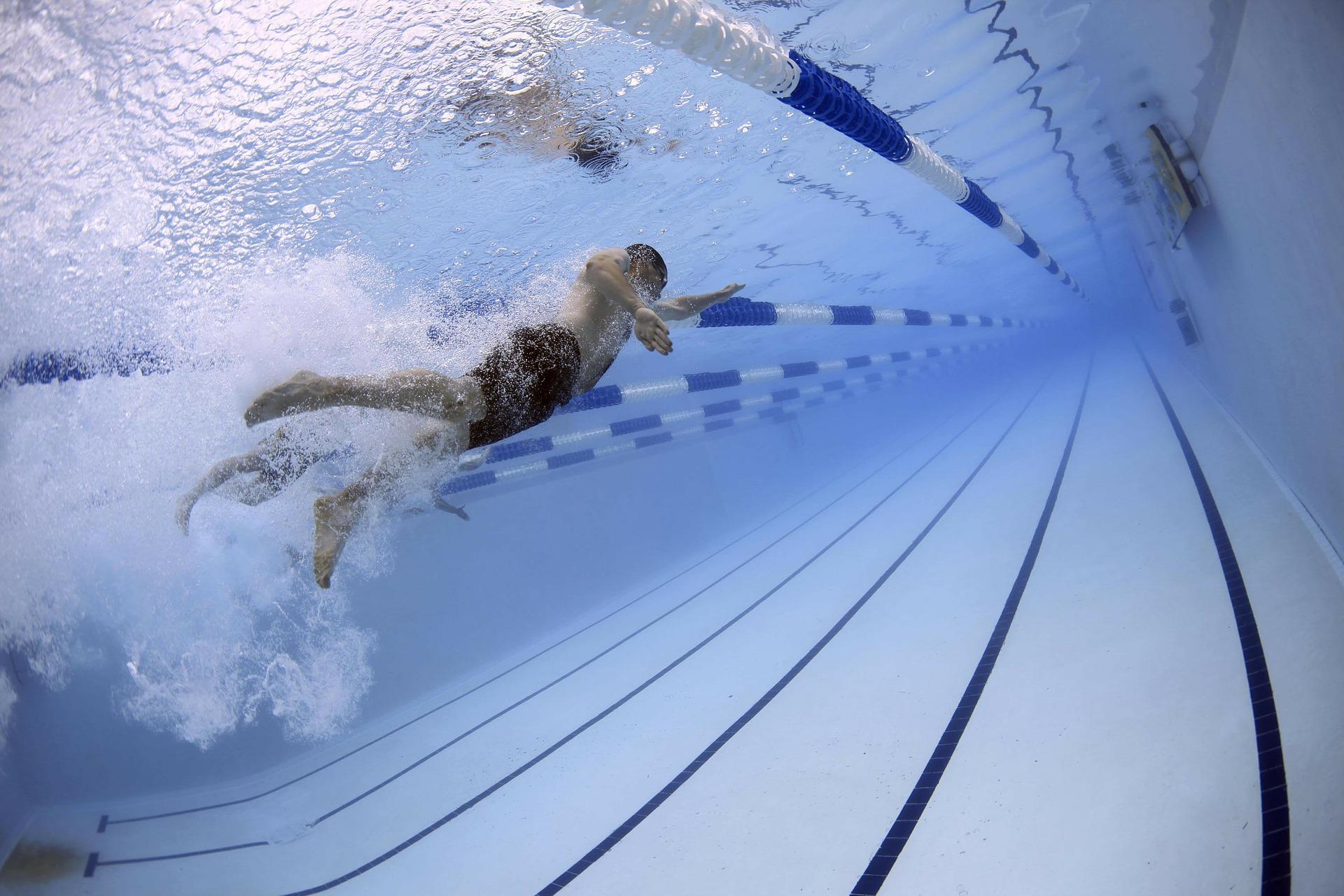 Nageur dans une piscine olympique